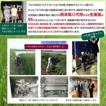 足ゆび運動ぞうり 八代産い草モデル +プラス では熊本県八代市がその生産量の95%を占めることとなっております